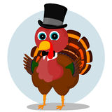 Elegant Turkey Royalty Free Stock Photo