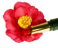 Elegant valentin Royaltyfri Fotografi