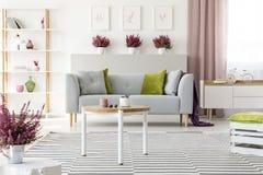 Elegant vardagsrum med vitt möblemang, den stilfulla träkaffetabellen, den mönstrade filten, den gråa soffan med kuddar och ljung royaltyfri fotografi