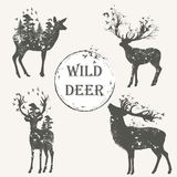 Elegant vector collection of forest animal high detailed silhoue vector illustration
