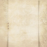 Elegant vintage background Stock Photos
