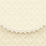 Elegant vintage background Royalty Free Stock Images