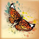 Elegant vintage design with orange butterfly and ink splats Royalty Free Stock Photography