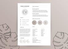 Elegant vrouwelijk cv hervat malplaatje - elegant modieus ontwerp - vector illustratie