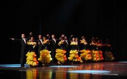 Elegant waltz-the Austria's world Dance Royalty Free Stock Image