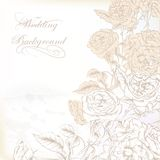 Elegant wedding background  with hand drawn roses for design Stock Images