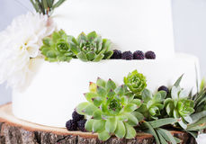 Elegant wedding cake with flowers and succulents. Stock Photos