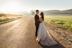 Elegant wedding couple stands tired on the road Stock Photography
