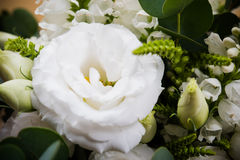 Elegant white bouquet of flowers and leaves macro closeup Stock Images