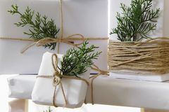 Elegant white handcraft gift boxes and fresh fir branches. Seasonal celebration and eco-friendly concept stock images