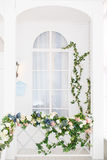Elegant White Window Overgrown With Greenery.