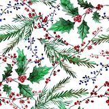 Winter seamless pattern. Elegant winter seamless pattern with holly berries and fir tree branches, design elements. Can be used for winter holiday invitations Stock Images