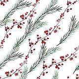 Winter seamless pattern. Elegant winter seamless pattern with holly berries and fir tree branches, design elements. Can be used for winter holiday invitations Royalty Free Stock Photos