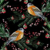 Winter seamless pattern. Elegant winter seamless pattern with watercolor birds and fir tree branches, design elements. Can be used for winter holiday invitations Royalty Free Stock Photos