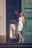 Elegant woman Stock Images