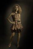 Elegant woman fashion Stock Photos