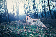 Elegant woman in forest Royalty Free Stock Photography