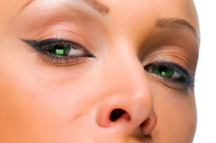Elegant woman with green eyes Stock Photography