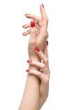 Elegant woman hands stock image