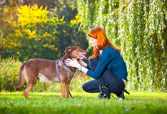 Elegant woman has fun with her big dog in the park Royalty Free Stock Images
