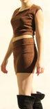 Elegant woman in leopard dress Stock Photography