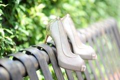 Elegant woman shoe Stock Image