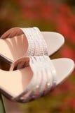Elegant woman shoes Royalty Free Stock Photos