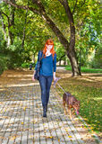 Elegant woman walking her big dog in the park Royalty Free Stock Photo