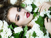 Elegant woman in white blossom. Young woman with red lips on pretty face lying in white blossom tree with green leaves closeup Royalty Free Stock Photography