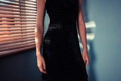 Elegant woman by window Royalty Free Stock Photo