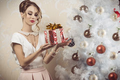 Elegant woman with xmas gift Stock Photos