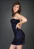 Elegant women Royalty Free Stock Image