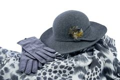 Elegant women  accessories. Felt hat with leather gloves and  shawl with animal print Royalty Free Stock Image