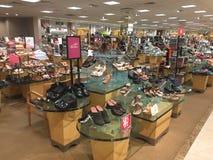 Elegant women`s shoes on display Stock Photos