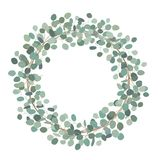 Round wreath with silver dollar eucalyptus. Healing Herbs for cards, wedding invitation, posters, save the date or. Elegant wreath with silver dollar eucalyptus stock illustration