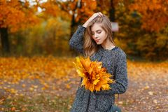 Elegant young attractive woman in a luxurious gray coat is standing in a park holding maple yellow leaves. Pretty cute girl model royalty free stock photo