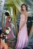 Elegant young girl in a pink dress Stock Photos