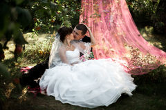Elegant young happy wedding couple is sitting at green grass on Royalty Free Stock Photography