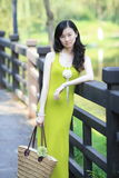 Elegant  young lady Stock Images