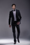 Elegant  young model wearing suit Royalty Free Stock Photos