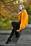 Elegant young woman posing in autumn park. Beautiful elegant young woman posing in autumn park royalty free stock photos