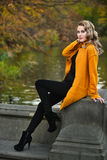 Elegant young woman posing in autumn park. Beautiful elegant young woman posing in autumn park stock image