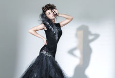 Elegant young woman wearing fancy dress. Elegant young lady wearing fancy dress Stock Image