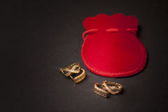 Eleganta örhängen Royaltyfri Foto