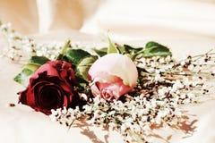 Eleganta blommor, symboler Fotografering för Bildbyråer