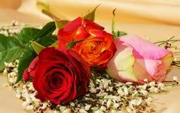 Eleganta blommor, symboler av förälskelse Arkivfoto