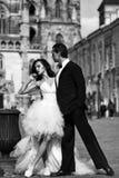 Eleganta brölloppar Gifta sig near sexiga par kast på den utomhus- slotten royaltyfri foto