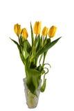 Eleganta gula tulpan i en crystal vas Royaltyfri Foto