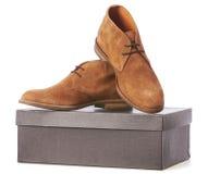 Eleganta nya bruna skor Arkivbild