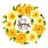 Elegante achtergrond met gele gele narcisnarcissen De lentebloem met stam en bladeren Realistisch patroon Royalty-vrije Stock Afbeeldingen